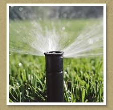 Arizona Sod Water Awareness Month